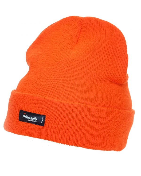 71fde25f66b ... Cap Beanie  new concept a00f5 a151d Hi-Vis 3M Thinsulate Beanie Hat ...
